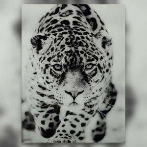 Glasschilderij Luipaard - pilota stoer wonen
